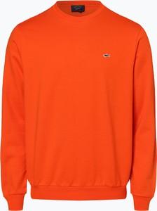 Pomarańczowa bluza Paul & Shark w stylu casual