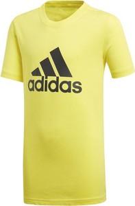 Żółta koszulka dziecięca ctxsport z krótkim rękawem