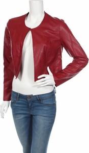 Czerwona kurtka La Fee Maraboutée w stylu casual