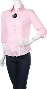 Różowa koszula Urban Nature