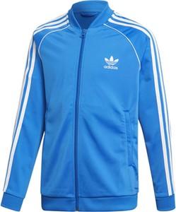 Odzież Adidas Superstar > ed7807