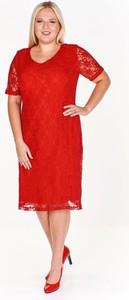 Czerwona sukienka Fokus dopasowana z krótkim rękawem z dekoltem w kształcie litery v