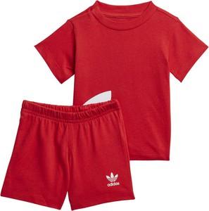 Odzież niemowlęca Adidas dla chłopców