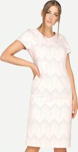 Sukienka Tomasz Sar prosta z krótkim rękawem z okrągłym dekoltem