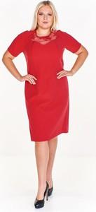 Czerwona sukienka Fokus