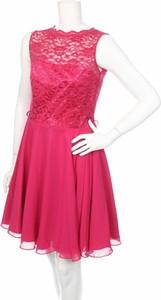 Różowa sukienka Swix rozkloszowana mini