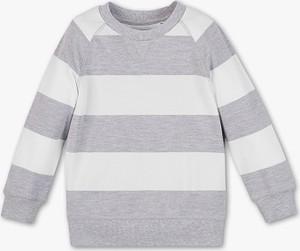 Bluza dziecięca Palomino