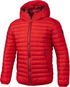 Czerwona kurtka Pit Bull krótka w stylu casual z tkaniny