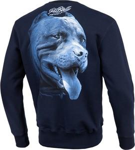 Bluza Pit Bull West Coast z dzianiny w młodzieżowym stylu