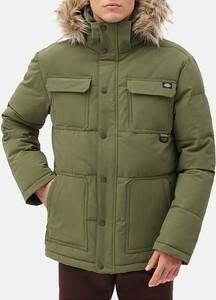 Zielona kurtka Dickies w stylu casual krótka