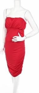 Sukienka Crazy Wool mini bez rękawów gorsetowa