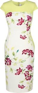 Sukienka Fokus midi w stylu vintage z okrągłym dekoltem