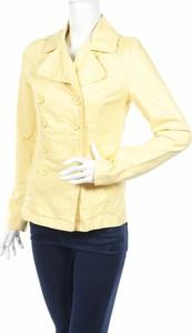Żółta kurtka Colours Of The World krótka