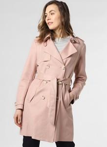 Różowy płaszcz Apriori