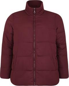 Czerwona kurtka Zizzi krótka w stylu casual