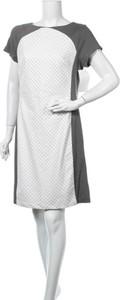Sukienka Ivanka Trump z krótkim rękawem w stylu casual z okrągłym dekoltem