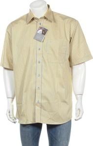 Żółta koszula Kauf z klasycznym kołnierzykiem z krótkim rękawem w stylu casual