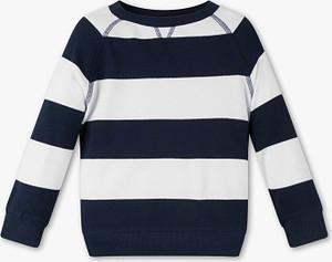 Bluza dziecięca Palomino z dzianiny dla chłopców w paseczki