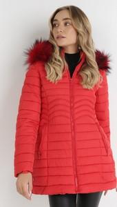 Czerwona kurtka born2be krótka w stylu casual z kapturem