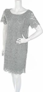 Sukienka G.ricceri