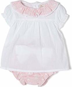 Odzież niemowlęca zippy