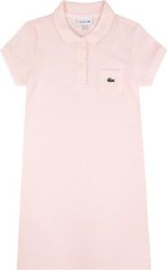 Różowa sukienka Lacoste