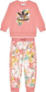 Różowy dres dziecięcy Adidas
