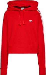 Czerwona bluza Adidas Originals w sportowym stylu krótka