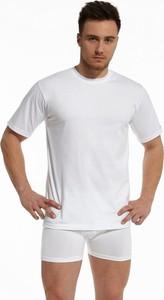 Koszulka Cornette