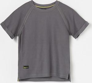 Brązowa koszulka dziecięca Reserved