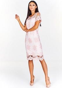 5c2a80ef01 Sukienka Fokus midi z okrągłym dekoltem