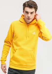 Żółta bluza Adidas