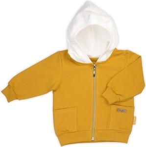 Odzież niemowlęca Nicol dla chłopców