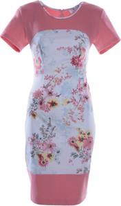 Sukienka Fokus z okrągłym dekoltem z krótkim rękawem z dzianiny