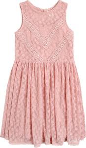 Różowa sukienka dziewczęca Cool Club z bawełny w kwiatki
