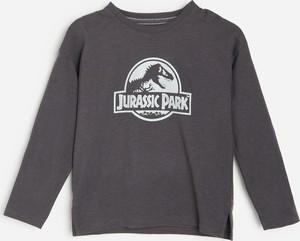 Koszulka dziecięca Reserved dla chłopców z długim rękawem