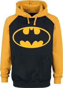 Bluza Batman z bawełny w młodzieżowym stylu
