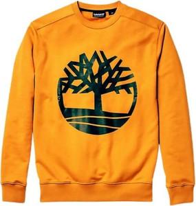 Pomarańczowa bluza Timberland w młodzieżowym stylu