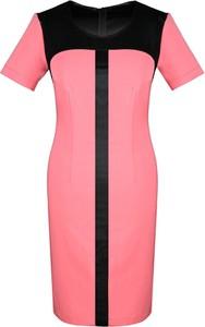 Różowa sukienka Fokus z okrągłym dekoltem midi
