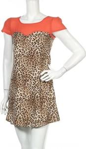 Sukienka Pinky w stylu casual mini
