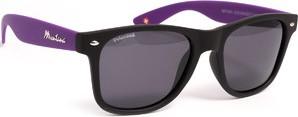 Okulary polaryzacyjne MONTANA MP40 H