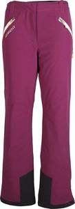 Spodnie sportowe D'frent