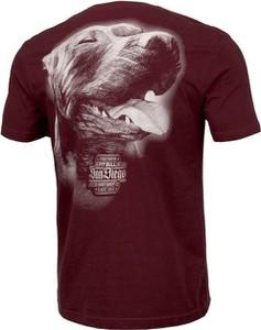 T-shirt Pit Bull z nadrukiem z krótkim rękawem w młodzieżowym stylu