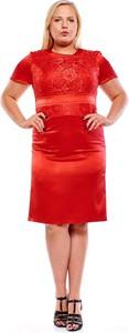 Czerwona sukienka Fokus z krótkim rękawem dla puszystych midi