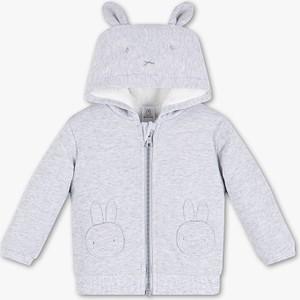 Bluza dziecięca C&A z bawełny