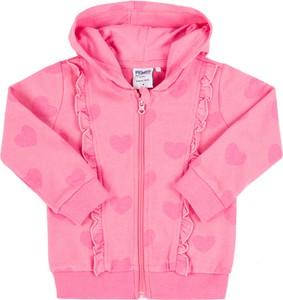 Różowa bluza dziecięca Primigi