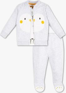 Komplet dziecięcy Baby Club dla chłopców z bawełny