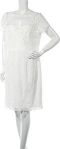 Sukienka Marie Noir mini z okrągłym dekoltem