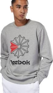 Bluza Reebok Classic w młodzieżowym stylu