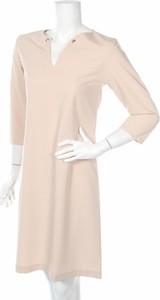 Sukienka ZOCHA prosta z długim rękawem